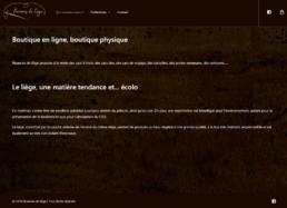 Site internet - Nuances de liège - Côté Gauche Christophe Golay